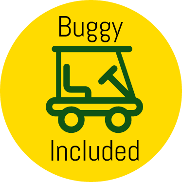 Buggy included